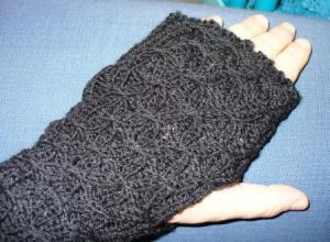 tern mitts finished 1